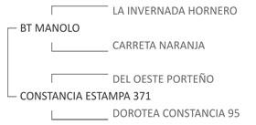 Genealogía Arrayán Alerta 670