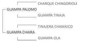 Genealogía Guampa Búho